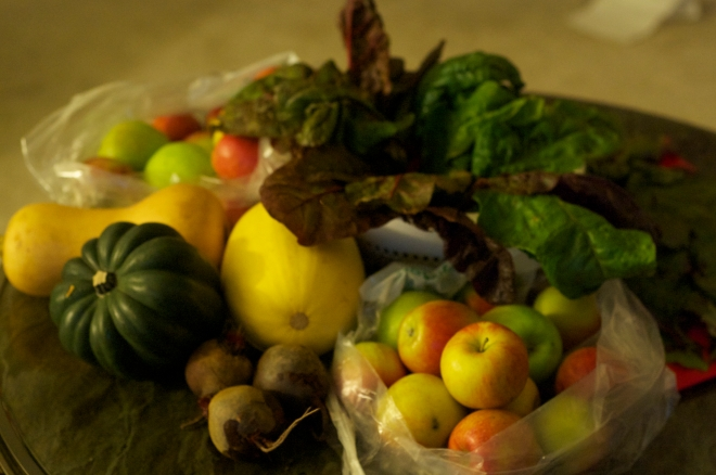 Some of the beautiful fruits and veggies I bought from the farm. Stay tuned for future posts using these ingredients!